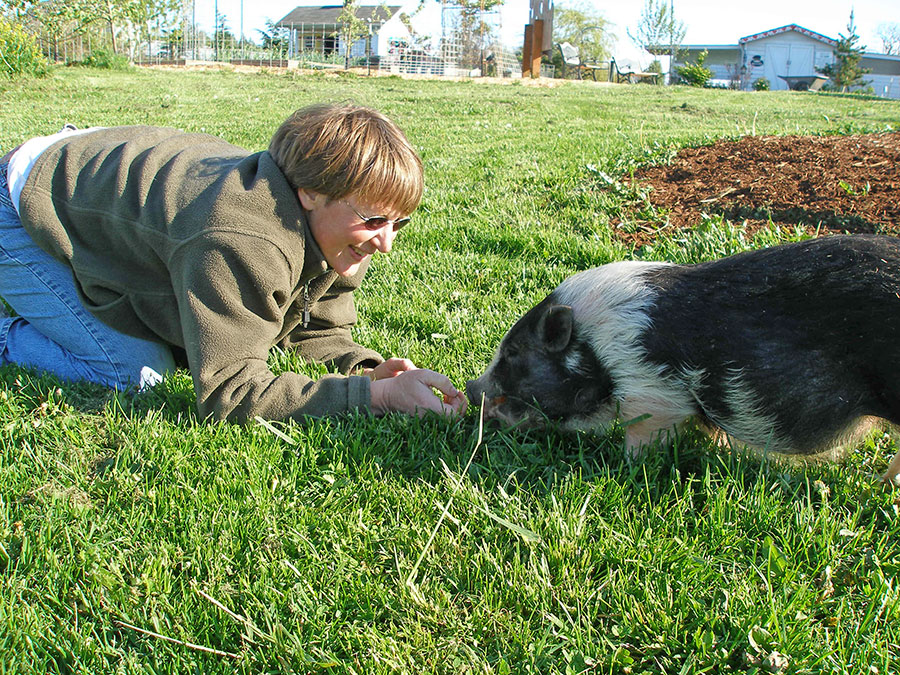 Lisa with a pot bellied pig at Pigs Peace Sanctuary