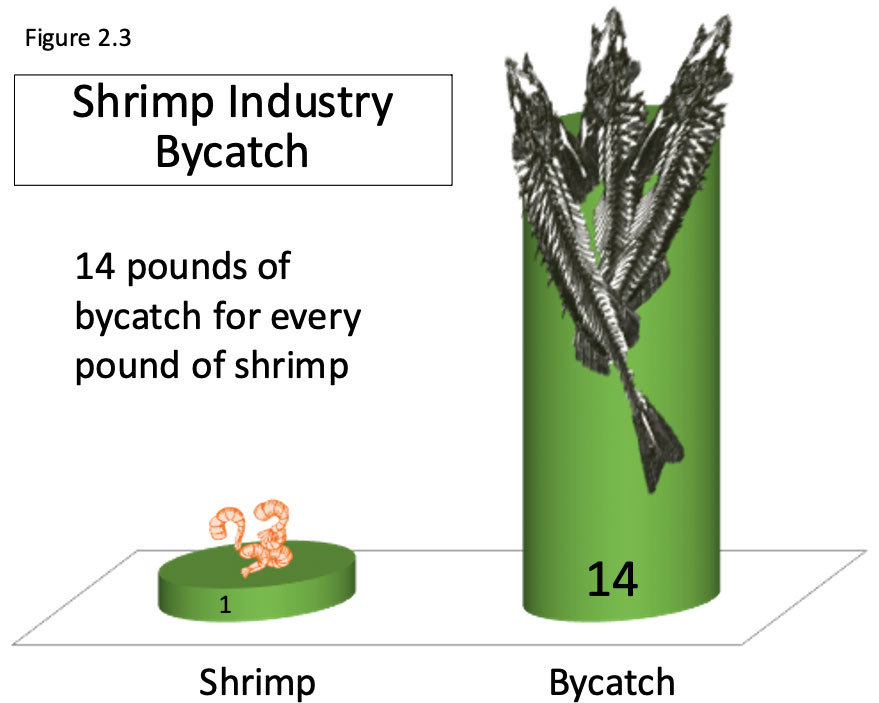 Chart illustrating 14 pounds of bycatch for every pound of shrimp